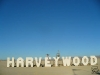 harveywood1c